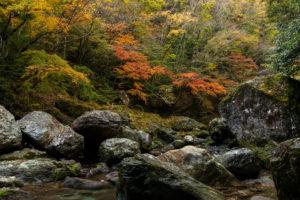 Takuya Okamoto Photography